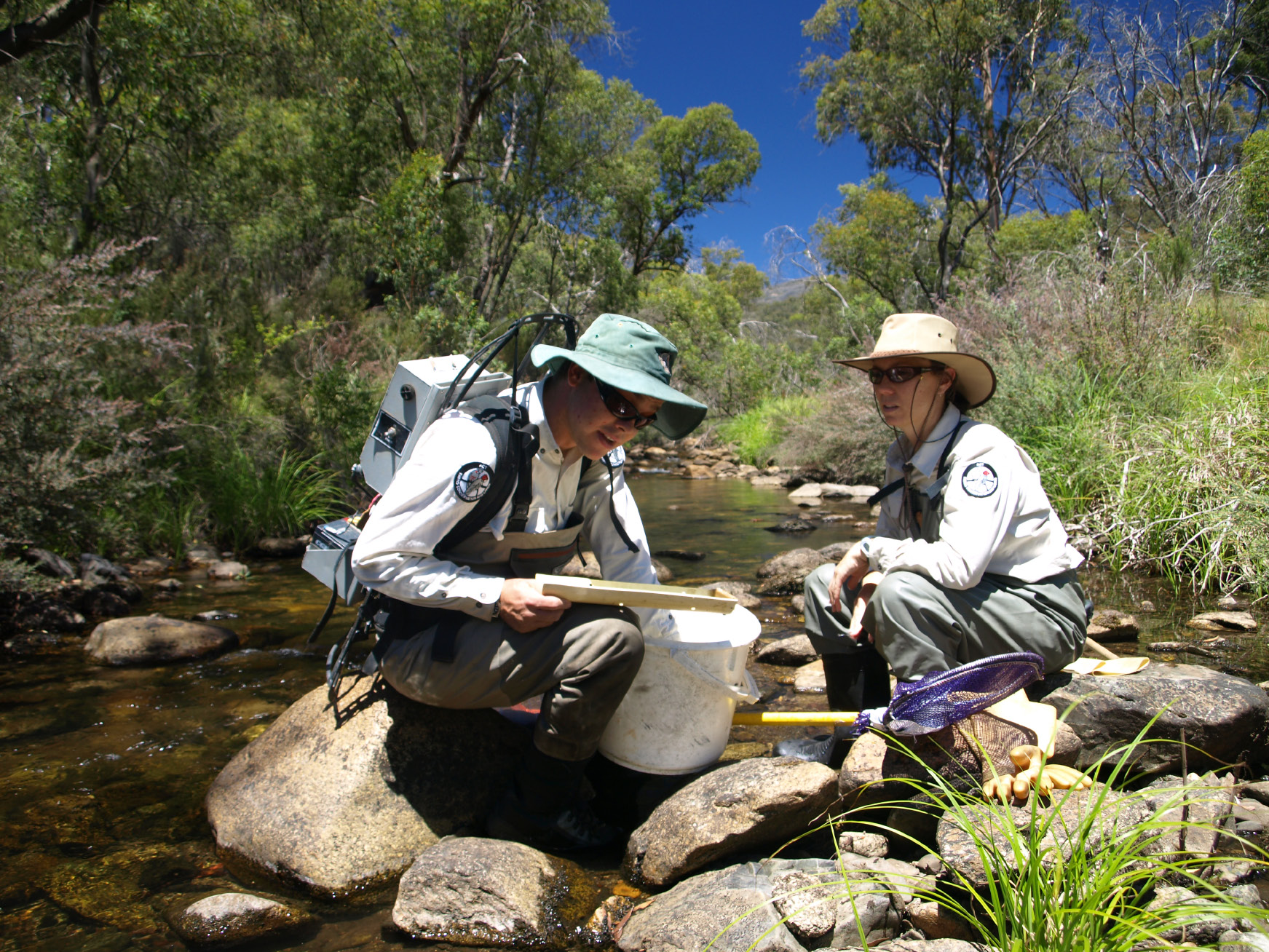 Image of two Directorate ecologists sitting on rocks by a stream reviewing samples taken from the water