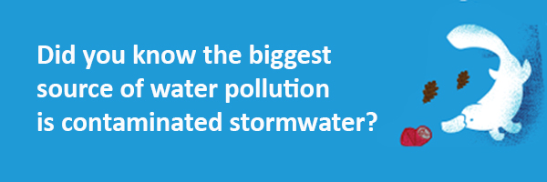 Did you know the biggest source of water pollution is contaminated stormwater?