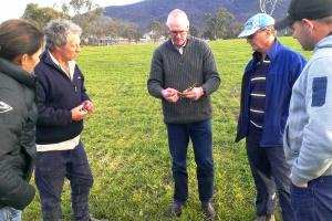 Landholders inspecting grasses in a field.
