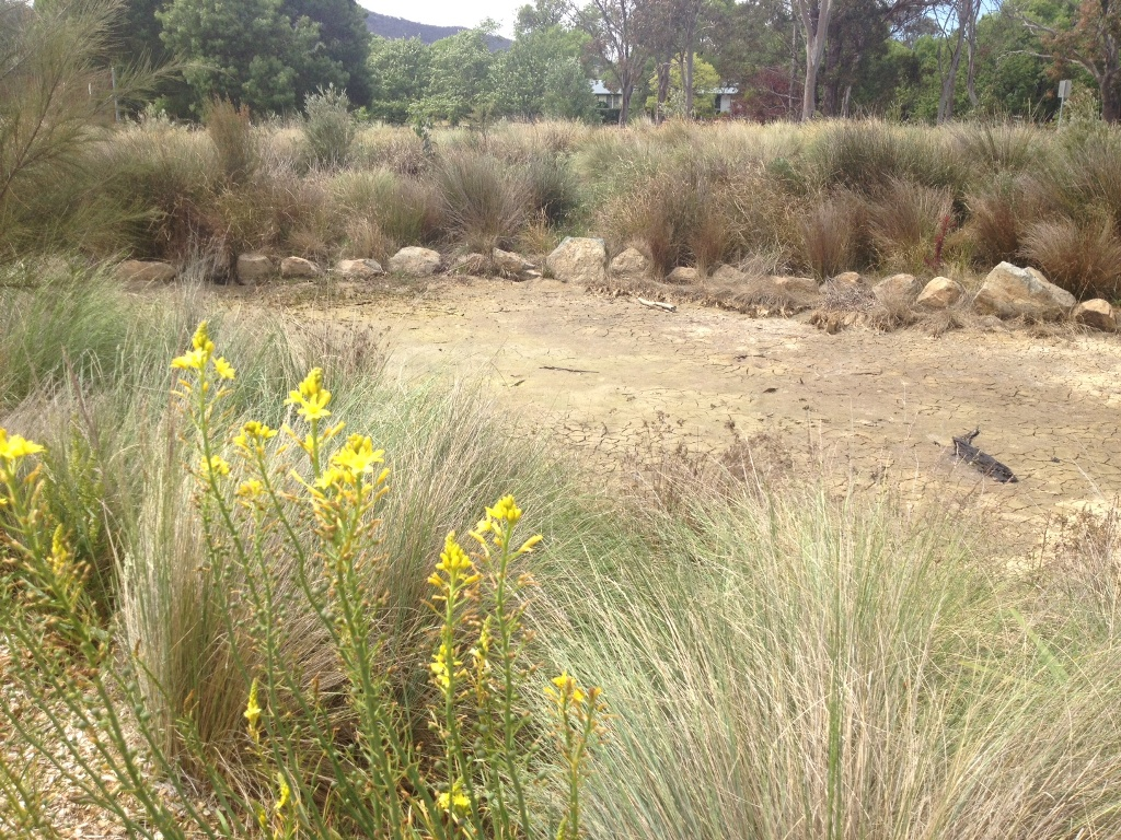Ephemeral zone dried out in November 2013 after a few dry months