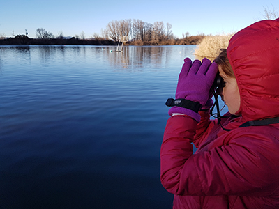 Girl using binoculars to search river for signs of platypus