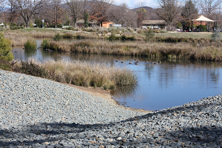 Dickson Wetlands