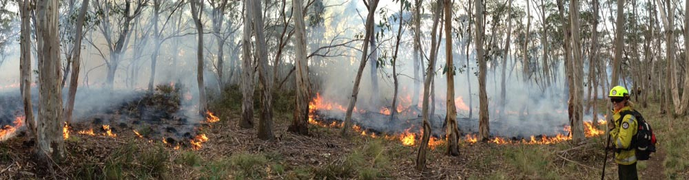 Bushfire Operations Plan