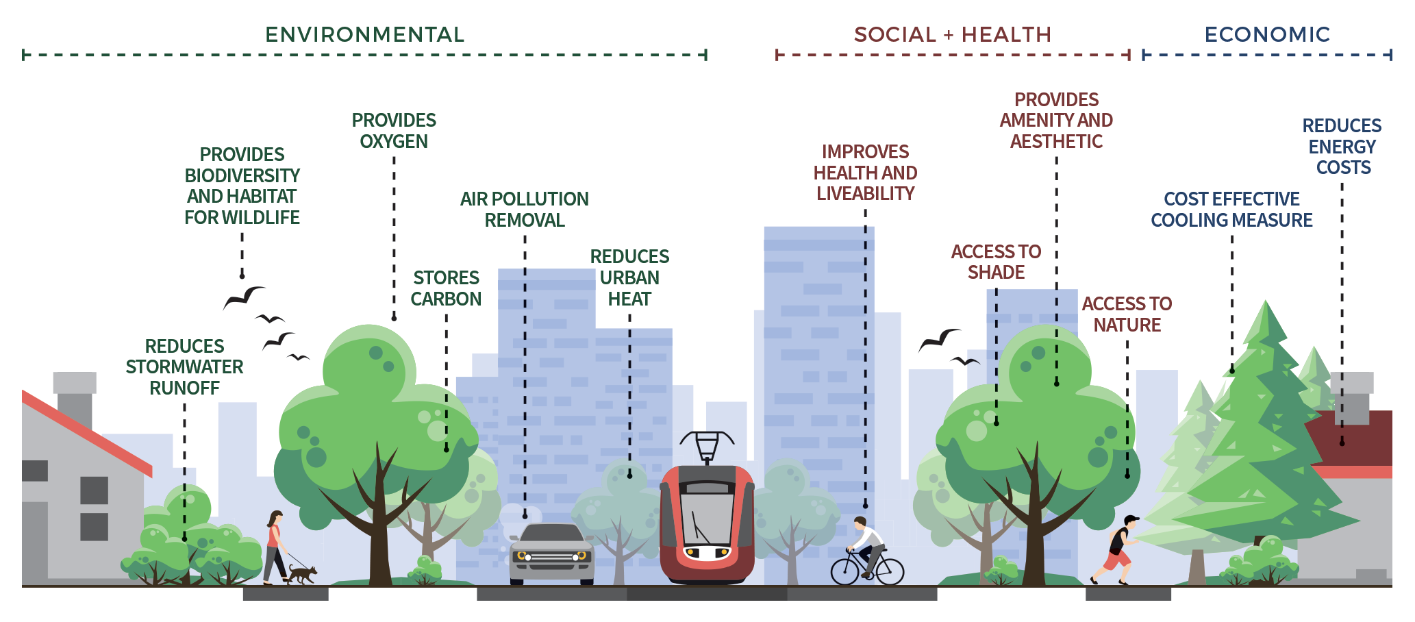 A graphic listing the benefits of living infrastructure above a cartoon image of elements of the urban environment such as buildings, people, trees and transport. Doted lines connect each benefit to a relevant image.  The environmental benefits listed are reduce stormwater runoff, provides biodiversity and habitat for wildlife, provides oxygen, stores carbon, air pollution removal, and reduces urban heat.  The social and health benefits listed are improves health and liveability, access to shade, provides amenity and aesthetic, and access to nature.  The economic benefits listed are cost effective cooling measures, and reduce energy costs.