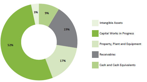 Figure 4 -Total assets as at 30 June 2013